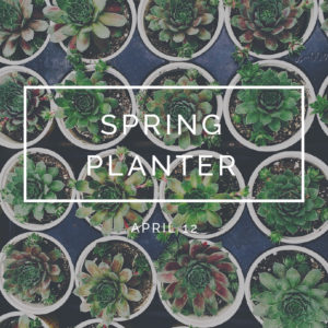 bungalow-968-workshops-early-spring-spring-planter-square-dates